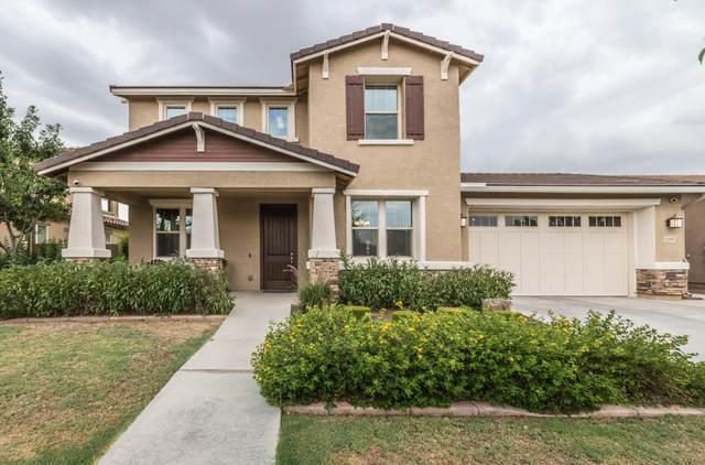 15283 W Charter Oak Road, Surprise, AZ 85379 (MLS #6105517) :: Klaus Team Real Estate Solutions