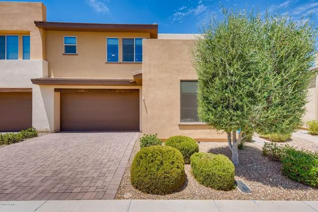 36208 N Desert Tea Drive, San Tan Valley, AZ 85140 (MLS #6105789) :: The Riddle Group