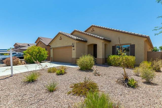 10741 W Desert Elm Lane, Peoria, AZ 85383 (MLS #6106941) :: Maison DeBlanc Real Estate