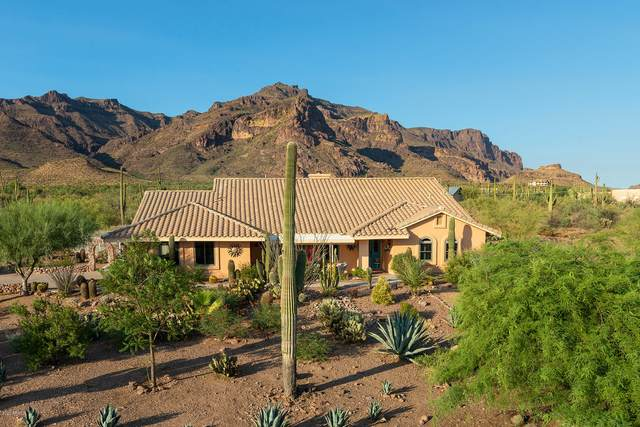 10242 E Open Sky Drive, Gold Canyon, AZ 85118 (MLS #6107660) :: Arizona 1 Real Estate Team