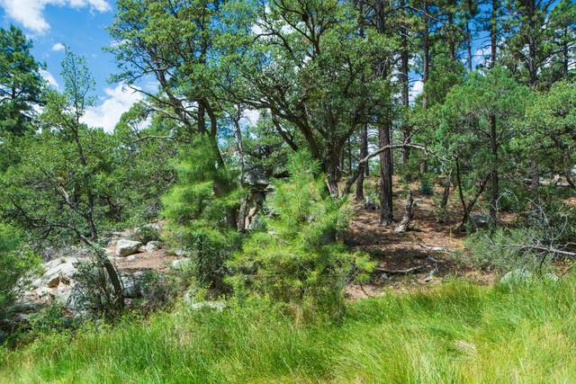 0000 W Copper Cliff (No Address) Drive, Prescott, AZ 86305 (MLS #6108073) :: Sheli Stoddart Team | M.A.Z. Realty Professionals