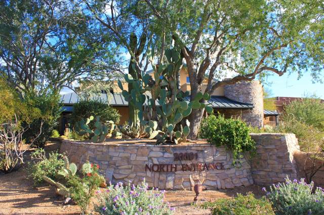 20801 N 90TH Place #172, Scottsdale, AZ 85255 (MLS #6108326) :: Conway Real Estate