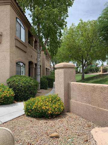 15095 N Thompson Peak Parkway #1009, Scottsdale, AZ 85260 (MLS #6108535) :: Arizona Home Group