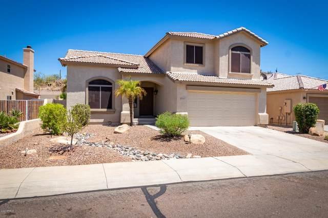 24637 N 65TH Avenue, Glendale, AZ 85310 (MLS #6109091) :: Nate Martinez Team