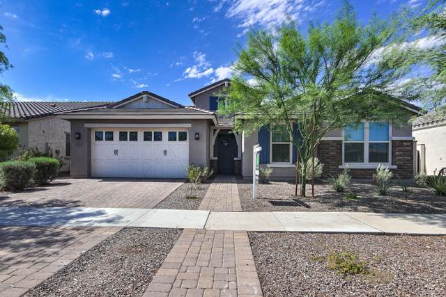 10733 E Sheffield Drive, Mesa, AZ 85212 (MLS #6109171) :: Klaus Team Real Estate Solutions