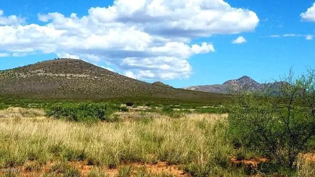 Lot 56 N Last Trail, Elfrida, AZ 85610 (MLS #6109539) :: My Home Group