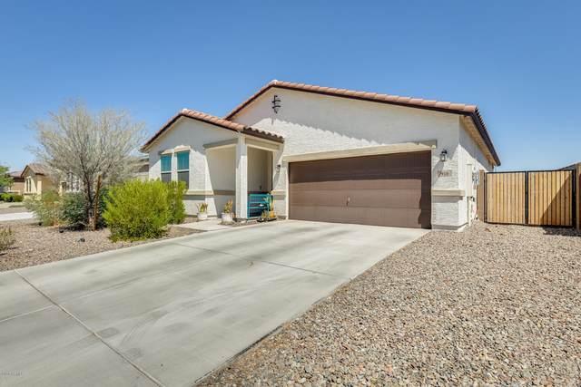 910 E Locust Lane, Avondale, AZ 85323 (MLS #6109750) :: Klaus Team Real Estate Solutions