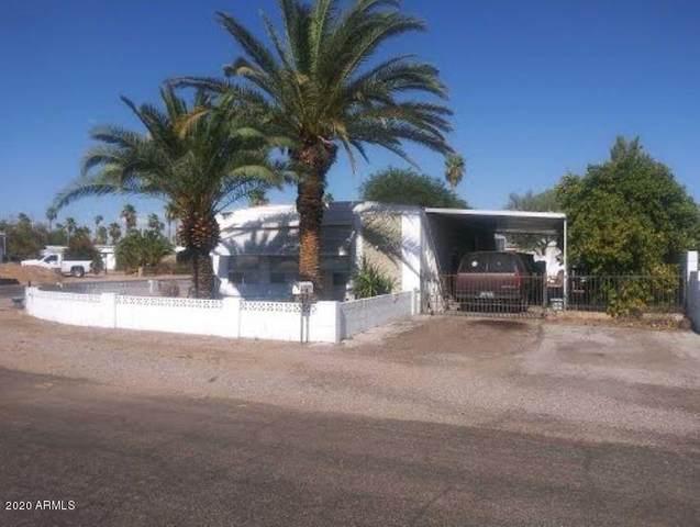 163 N 113TH Way, Apache Junction, AZ 85120 (MLS #6110019) :: Brett Tanner Home Selling Team