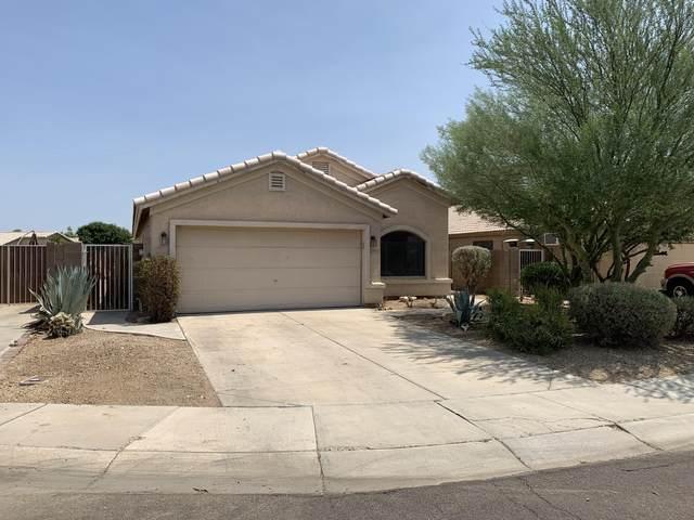 9927 N 94TH Avenue, Peoria, AZ 85345 (MLS #6111878) :: The Luna Team