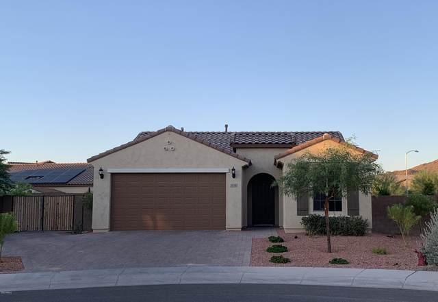 9516 W Chama Drive, Peoria, AZ 85383 (MLS #6112337) :: Arizona Home Group