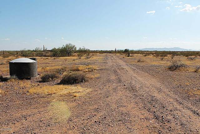 29738 W Radford Road, Wittmann, AZ 85361 (MLS #6113222) :: Devor Real Estate Associates