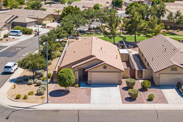 8119 W Marco Polo Road, Peoria, AZ 85382 (MLS #6113553) :: The Everest Team at eXp Realty