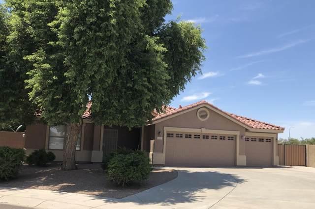 1270 S Eucalyptus Place, Chandler, AZ 85286 (MLS #6113641) :: Klaus Team Real Estate Solutions