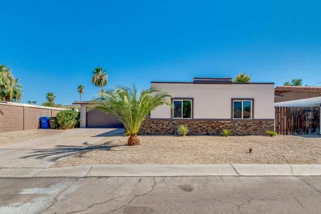 4137 E Shea Boulevard, Phoenix, AZ 85028 (MLS #6114001) :: Yost Realty Group at RE/MAX Casa Grande