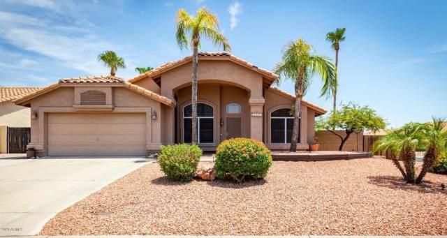 16419 N 12th Street, Phoenix, AZ 85022 (MLS #6114068) :: Klaus Team Real Estate Solutions