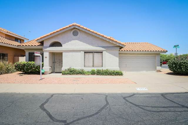 4424 E Villa Theresa Drive, Phoenix, AZ 85032 (MLS #6114947) :: Klaus Team Real Estate Solutions