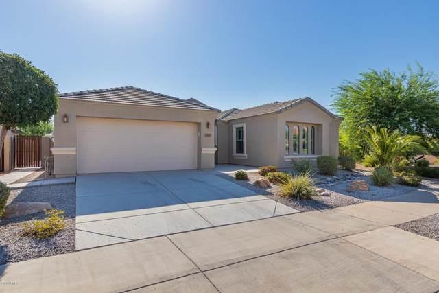 12679 N 175TH Drive, Surprise, AZ 85388 (MLS #6115603) :: Nate Martinez Team
