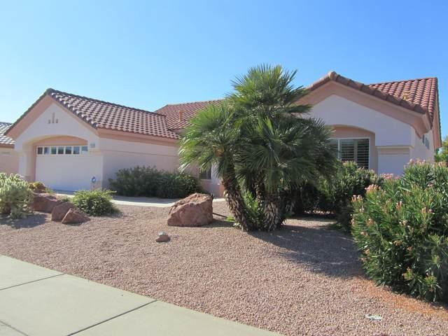 14619 W Via Montoya Drive, Sun City West, AZ 85375 (MLS #6116107) :: Long Realty West Valley