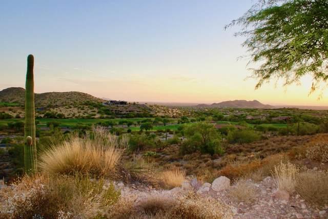 9331 E Skyline Trail, Gold Canyon, AZ 85118 (MLS #6116489) :: Howe Realty