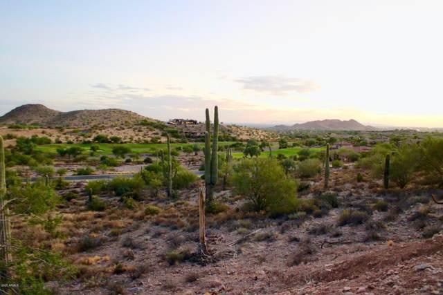 9353 E Skyline Trail, Gold Canyon, AZ 85118 (MLS #6116493) :: Howe Realty