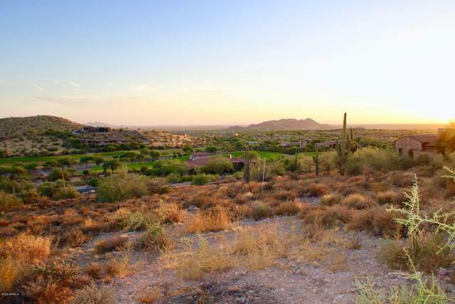 9315 E Skyline Trail, Gold Canyon, AZ 85118 (MLS #6116501) :: Howe Realty