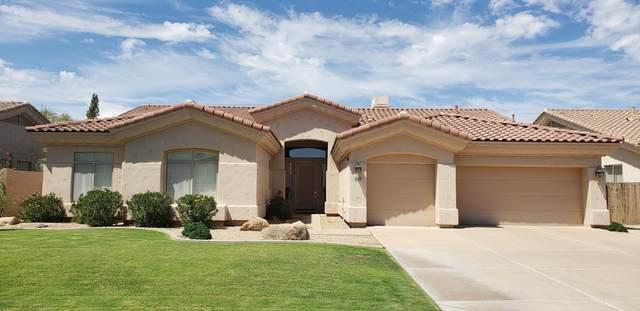 8132 E Mercer Lane, Scottsdale, AZ 85260 (MLS #6116643) :: Yost Realty Group at RE/MAX Casa Grande