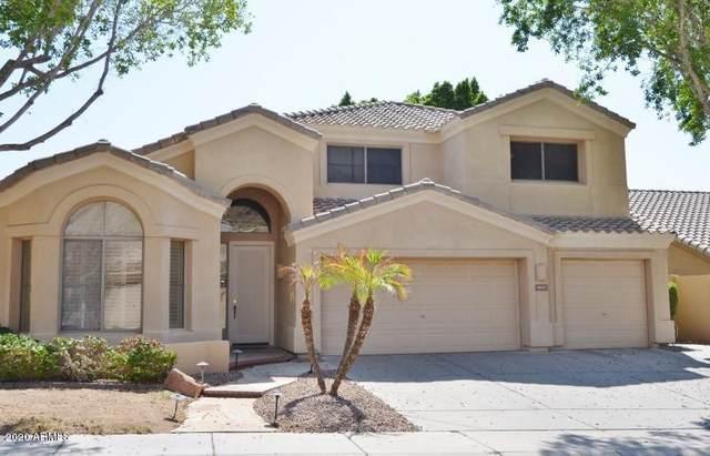 16007 S 7TH Street, Phoenix, AZ 85048 (MLS #6117654) :: Selling AZ Homes Team