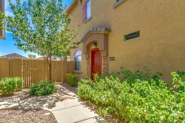 1350 S Greenfield Road #1019, Mesa, AZ 85206 (MLS #6117735) :: My Home Group