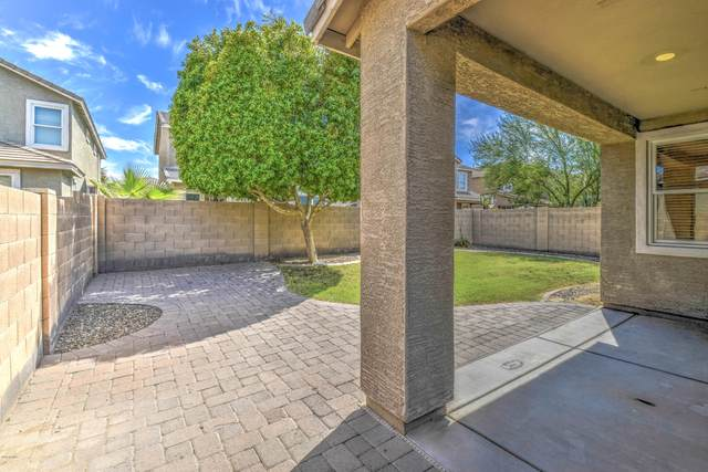 2337 E Fraktur Road, Phoenix, AZ 85040 (MLS #6117944) :: Klaus Team Real Estate Solutions