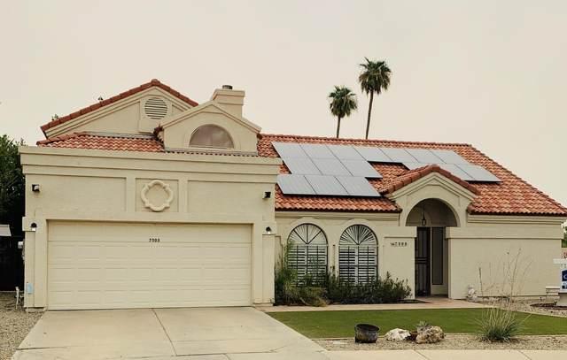 7503 W Julie Drive, Glendale, AZ 85308 (MLS #6120094) :: The Garcia Group