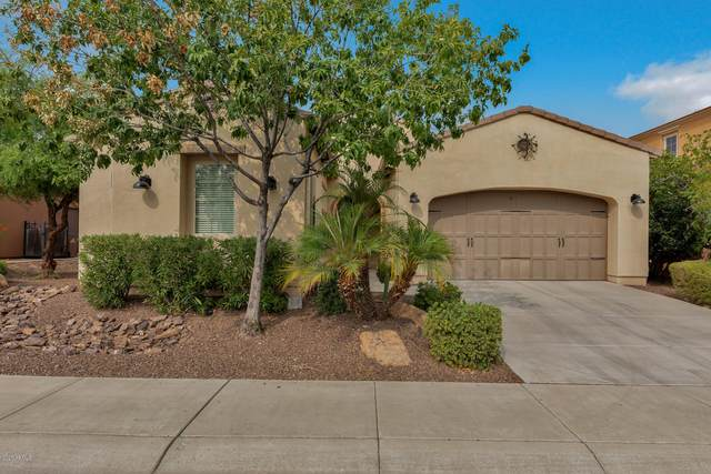 36834 N Crucillo Drive, San Tan Valley, AZ 85140 (MLS #6121597) :: Sheli Stoddart Team | M.A.Z. Realty Professionals
