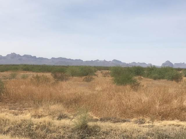 3914 N 519th Avenue, Tonopah, AZ 85354 (MLS #6121636) :: The Property Partners at eXp Realty