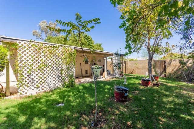 19433 N 30th Street, Phoenix, AZ 85050 (MLS #6124598) :: Lucido Agency