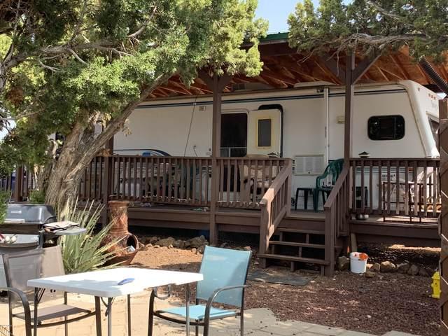 80 Co Rd 8056, Concho, AZ 85924 (MLS #6125515) :: Conway Real Estate