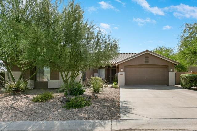 5537 E Dusty Wren Drive, Cave Creek, AZ 85331 (MLS #6125606) :: NextView Home Professionals, Brokered by eXp Realty