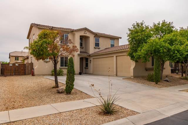 17169 W Gambit Trail, Surprise, AZ 85387 (MLS #6127032) :: Brett Tanner Home Selling Team