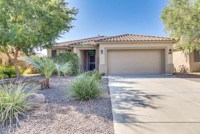 1223 W Stephanie Lane, San Tan Valley, AZ 85143 (MLS #6127438) :: Conway Real Estate