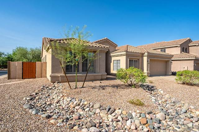 4635 E Via Montoya Drive, Phoenix, AZ 85050 (MLS #6127712) :: The Carin Nguyen Team
