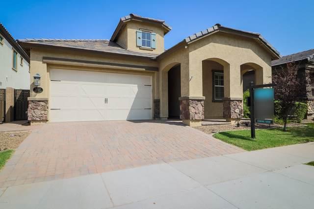 10522 E Naranja Avenue, Mesa, AZ 85209 (MLS #6127942) :: Conway Real Estate