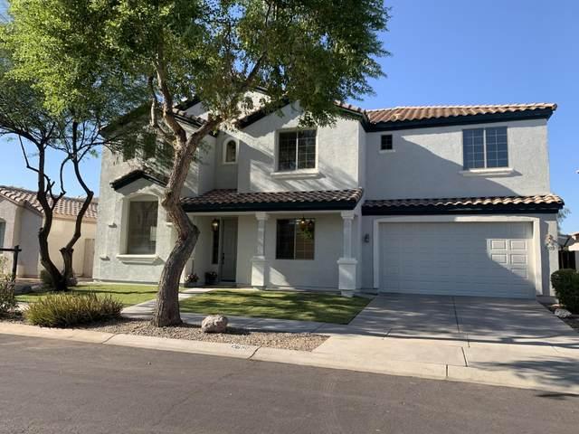 13650 W Evans Drive, Surprise, AZ 85379 (MLS #6128032) :: Klaus Team Real Estate Solutions