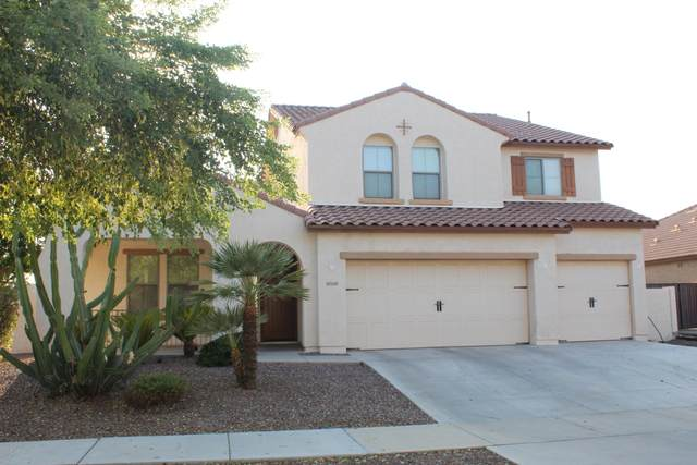12300 N 142ND Lane, Surprise, AZ 85379 (MLS #6128853) :: Nate Martinez Team