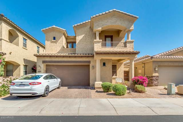 2393 N 142ND Avenue, Goodyear, AZ 85395 (MLS #6129035) :: Power Realty Group Model Home Center