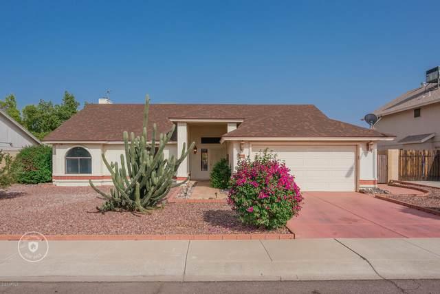 24431 N 41ST Avenue, Glendale, AZ 85310 (MLS #6129221) :: Selling AZ Homes Team