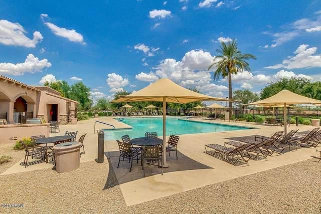 3133 N 142ND Drive, Goodyear, AZ 85395 (MLS #6129598) :: Klaus Team Real Estate Solutions