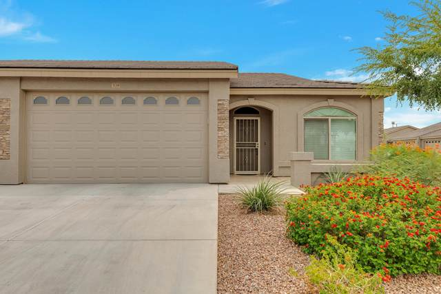 3117 S Signal Butte Road #538, Mesa, AZ 85212 (MLS #6130124) :: Long Realty West Valley