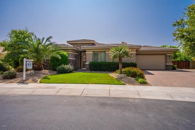 2418 N 141ST Lane, Goodyear, AZ 85395 (MLS #6131242) :: Klaus Team Real Estate Solutions