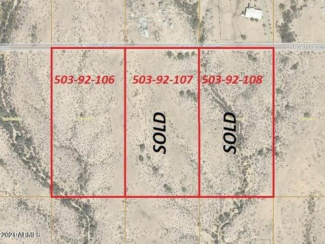 307xx W Forest Pleasant Place, Wittmann, AZ 85361 (MLS #6132970) :: Yost Realty Group at RE/MAX Casa Grande