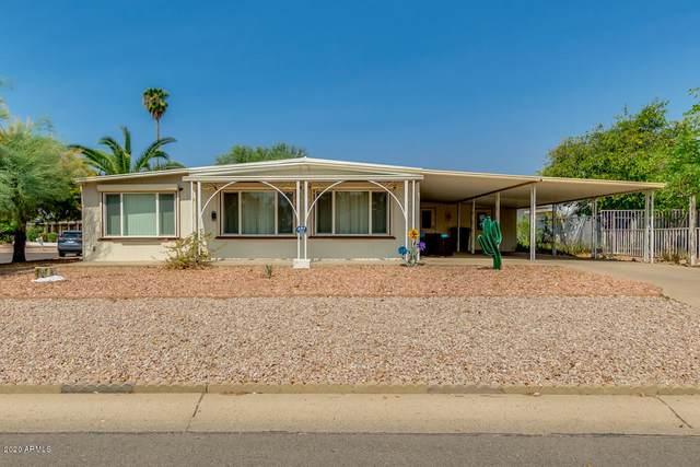 862 S Esperanza Avenue, Mesa, AZ 85208 (#6133443) :: The Josh Berkley Team