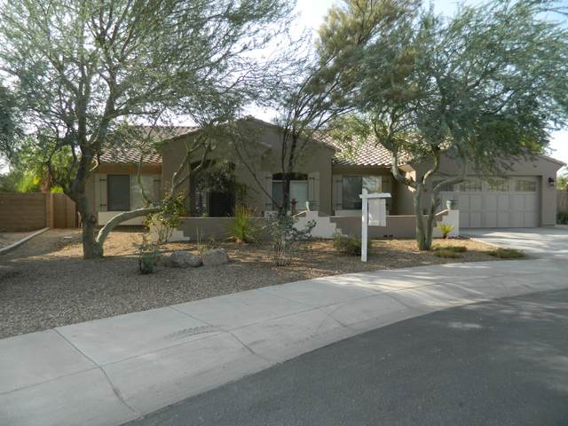 15169 W Coolidge Street, Goodyear, AZ 85395 (MLS #6133461) :: Conway Real Estate