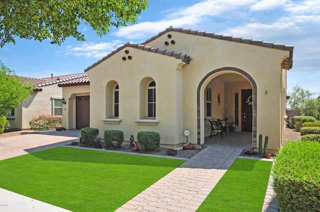 4655 N 206TH Avenue, Buckeye, AZ 85396 (MLS #6133648) :: Sheli Stoddart Team | M.A.Z. Realty Professionals